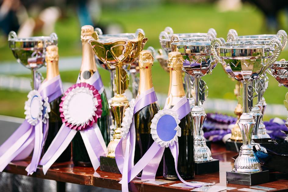 champion-trophies-winners-cups-trophy-PL5DSAL.jpg